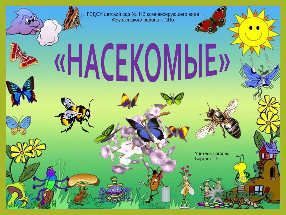 Доу проект насекомые-наши знакомые